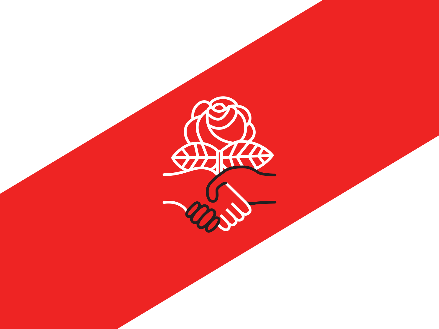 Madison-Area DSA